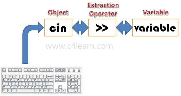 extraction operator cin Accepting input from user